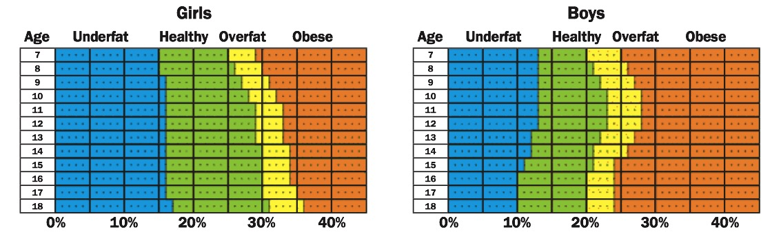 body fat percentage in women